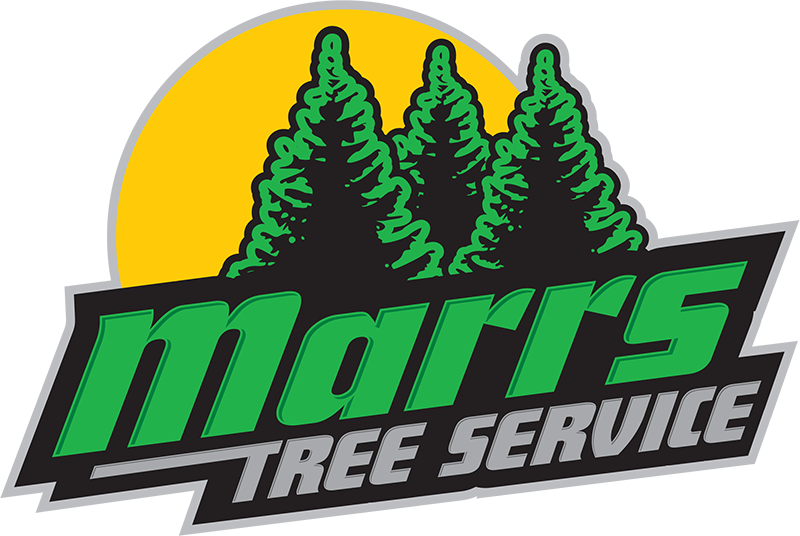 Marrs Tree Service